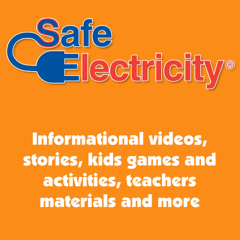 Safe Electricity Logo (red & blue)